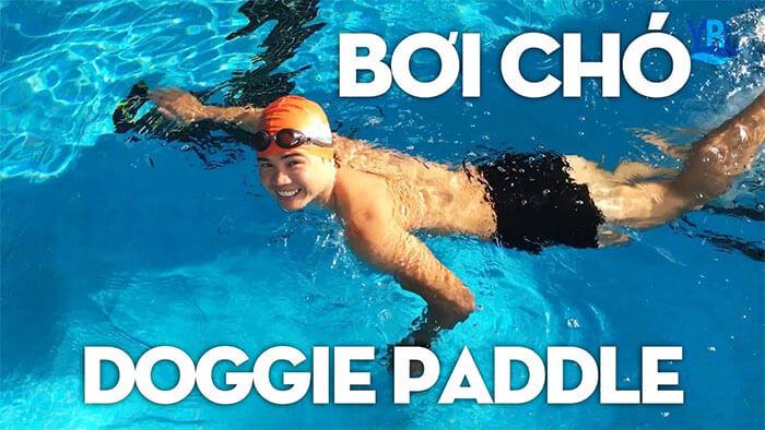 Bơi chó trong bơi lội